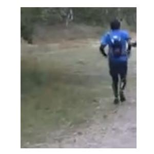 ultra running