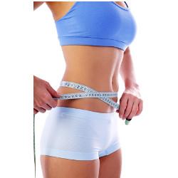 Body shape plan